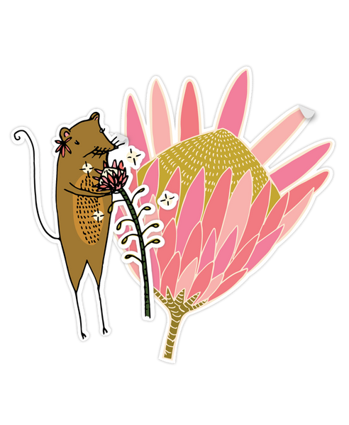 Cut out of Protea & Petal Sticker Pack