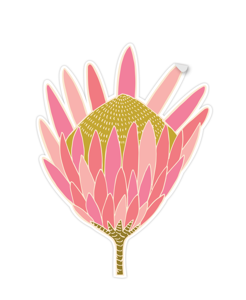 Cut out of Protea Sticker