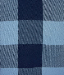 """Gratiot"" - Blue Plaid: FEATHERWEIGHT"
