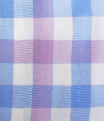 """Adams 2.0"" - Blue & Pink Plaid: NO SWEAT"