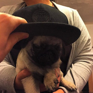 Being A Mutt In #MuscleMutt Stealth Black Snapback