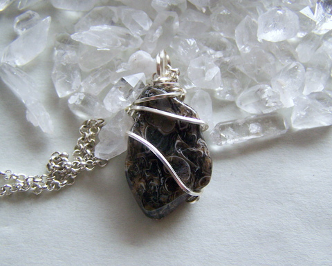 Fossil Shell Natural Agate Wire Wrapped Stone Pendant