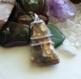 Ocean Jasper Natural Stone Wire Wrapped Pendant Necklace