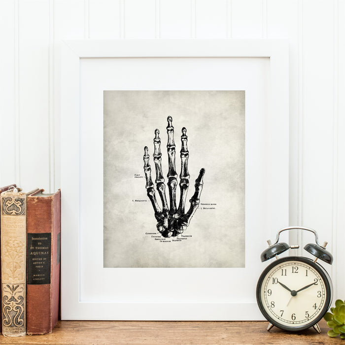 Anatomy of Hand Wall Art