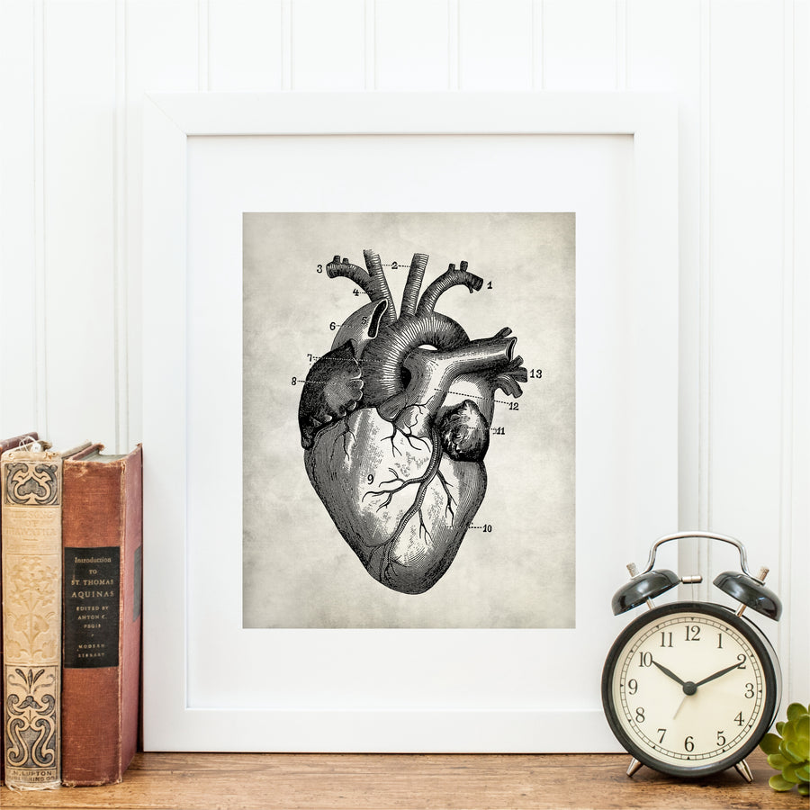 Human Anatomy Heart Wall Art