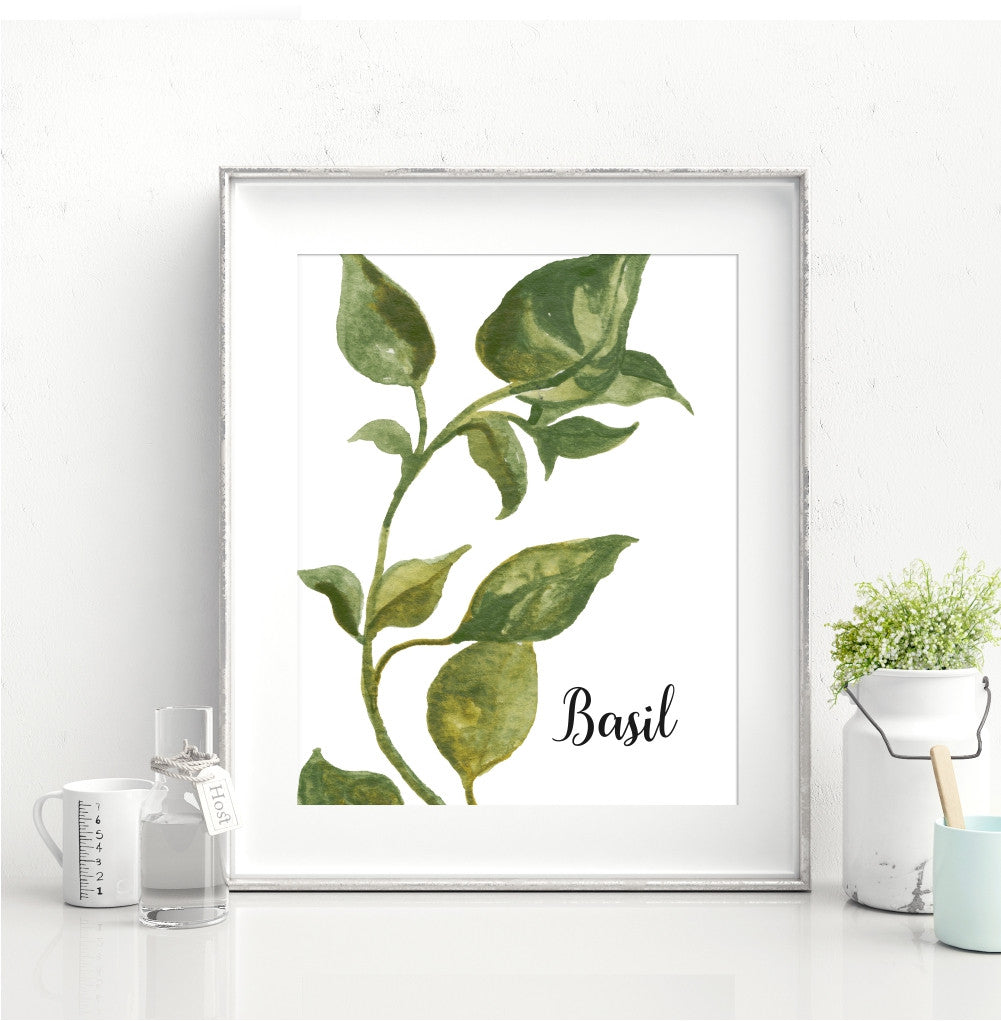 Watercolor Basil Kitchen Wall Art