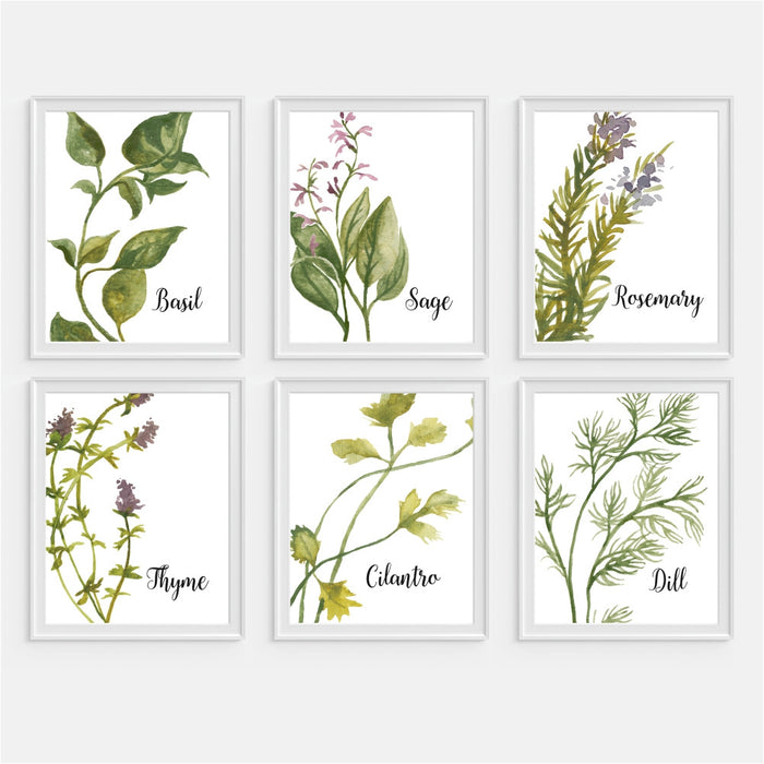 Watercolor Herb Wall Art Kitchen Decor