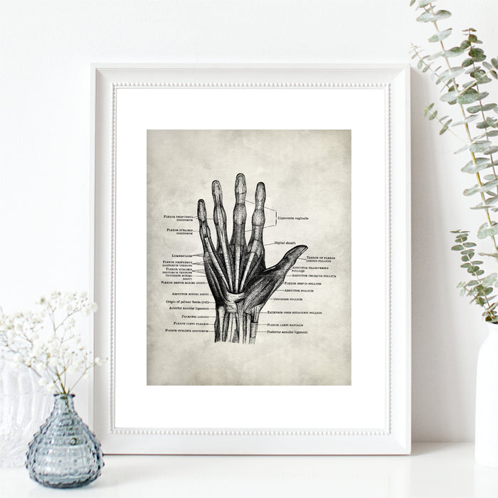 Medical Anatomy Hand Art