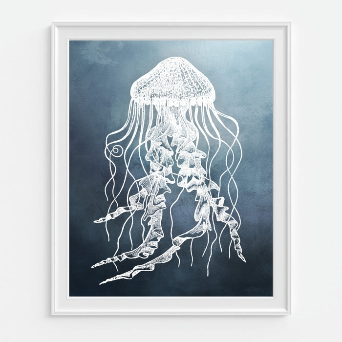 Jellyfish wall decor - vintage reproduction art