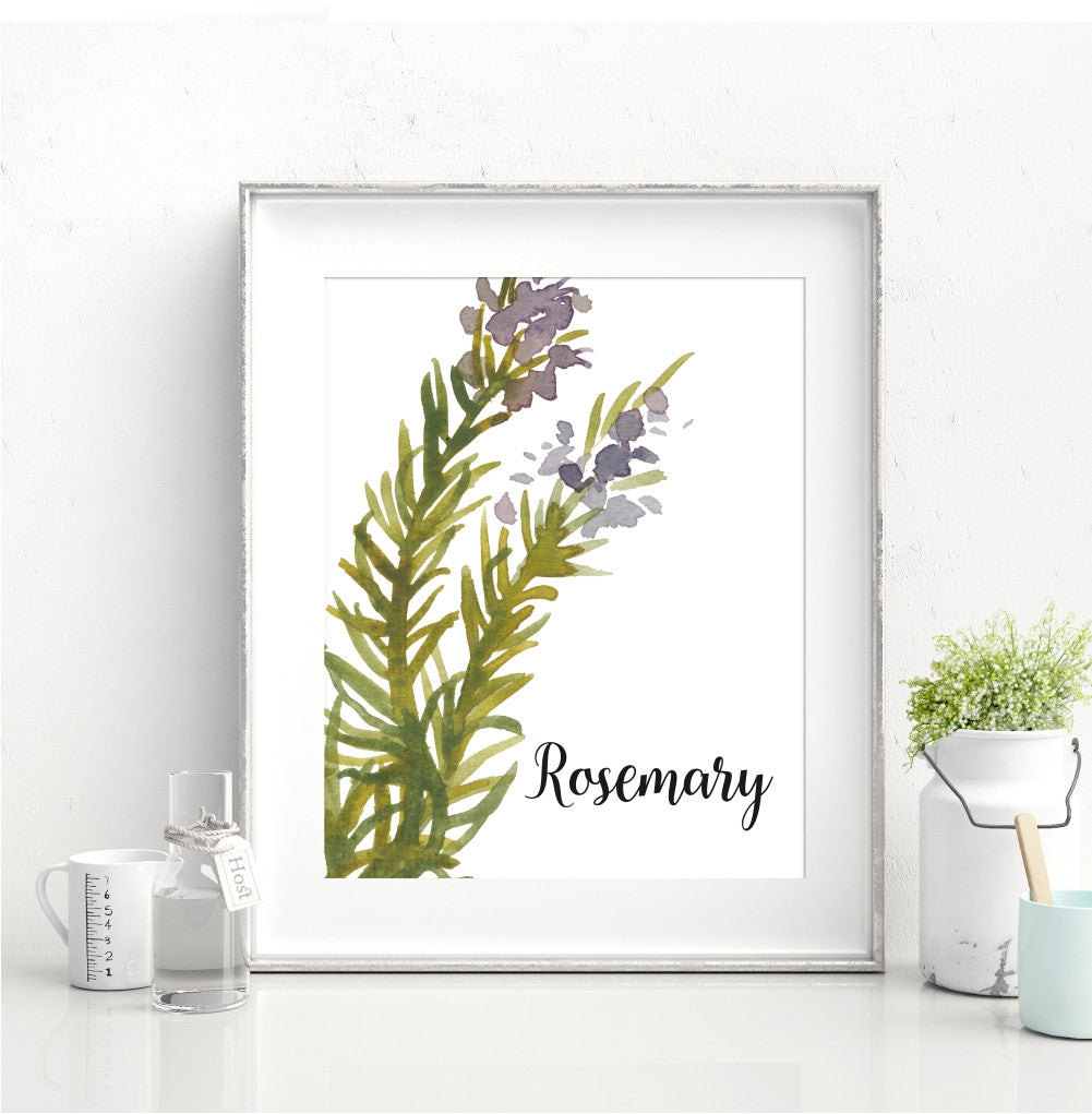 Watercolor Rosemary Kitchen Wall Art