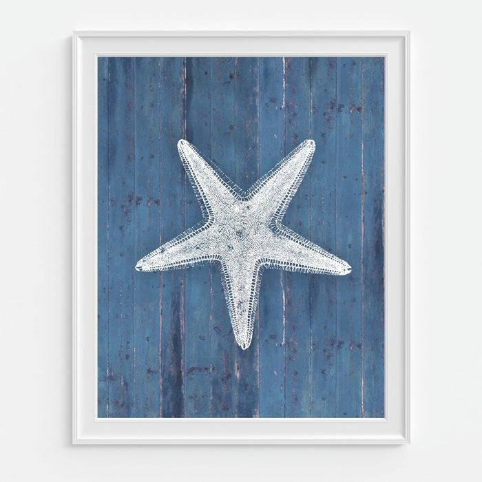 Starfish Wall Art Blue Background