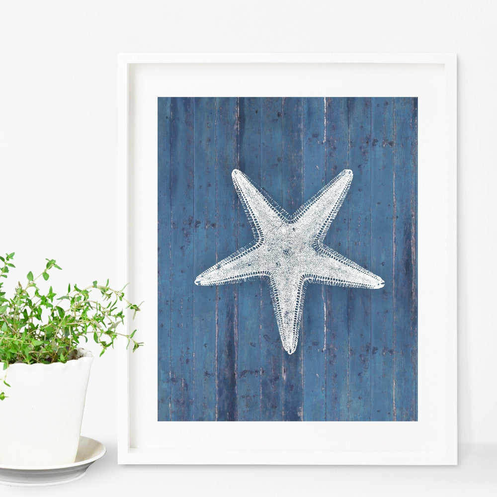 Vintage Starfish Wall Art