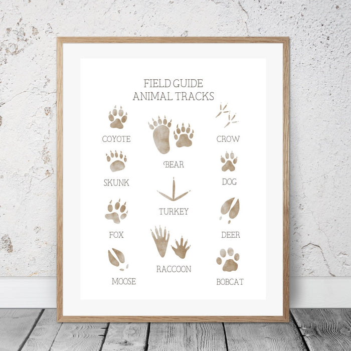 The field guide to animal tracks wall art. Guide to help identify common animal tracks