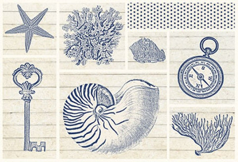 Sand Treasures Nautilus Collage - By the Sea Beach Decor