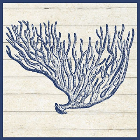 Coral Coastal Artwork Print
