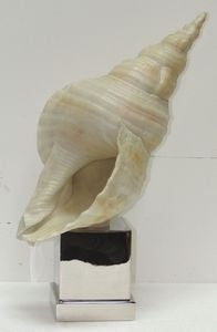 Shell & Nickel Sculpture - By the Sea Beach Decor