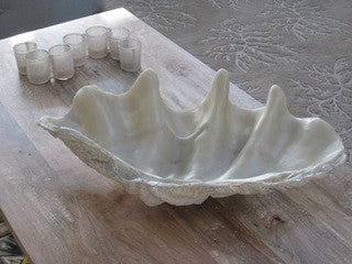 Faux Clam Shell - By the Sea Beach Decor