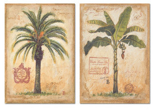 Outdoor Banana & Island Palm Coastal Decor Artwork