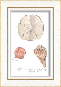 Beach Time Three Shells Framed Art - By the Sea Beach Decor