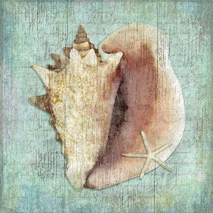 Serene Conch Shell Wood Print - By the Sea Beach Decor