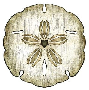Sand Dollar Wooden Print Beach Artwork