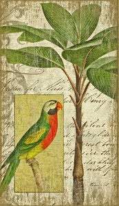 Parrot I Tropical Decor Wood Print - By the Sea Beach Decor