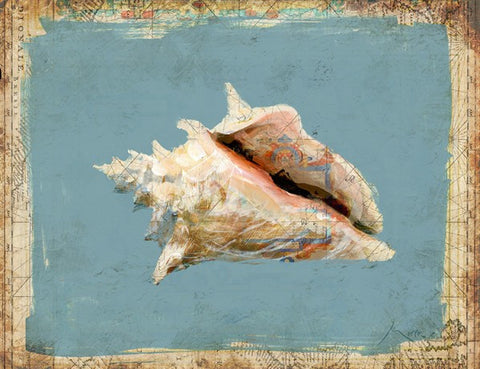 Sanibel Conch Shell - By the Sea Beach Decor