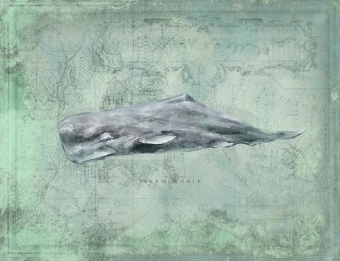 Harbor Island Sperm Whale - By the Sea Beach Decor