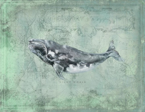 Harbor Island Right Whale - By the Sea Beach Decor