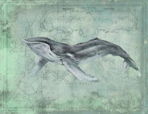 Harbor Island Humpback Whale - By the Sea Beach Decor