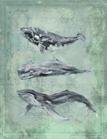 Harbor Island Three Whales - By the Sea Beach Decor