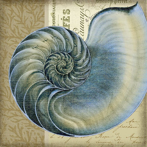 Indigo Shell 1 Wooden Artwork Print - By the Sea Beach Decor