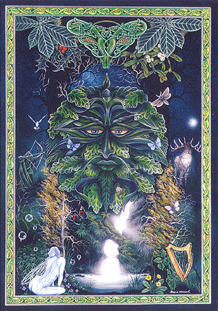 Woodland Fairies Green Man Sticker