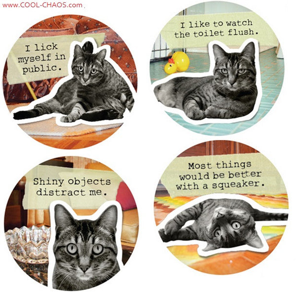 Bad Kitty,Naughty Cat Buttons Set