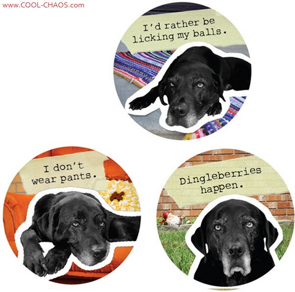 Bad Dog Black Lab Buttons Set