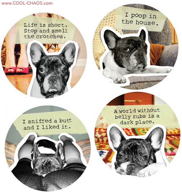 Bad Dog Boston Terrier Buttons Set