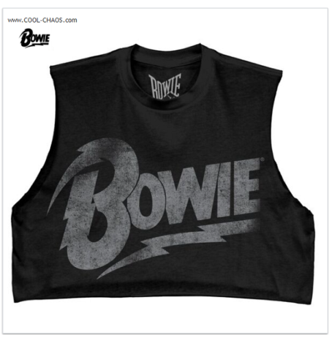 David Bowie Crop Top Rock T-Shirt / Relic Retro Rock Tee