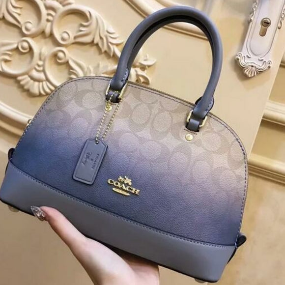Coach Lux Bag