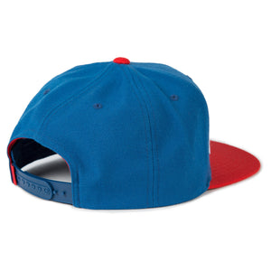 birds-of-condor-blue-golf-hooker-snapback-hat-back