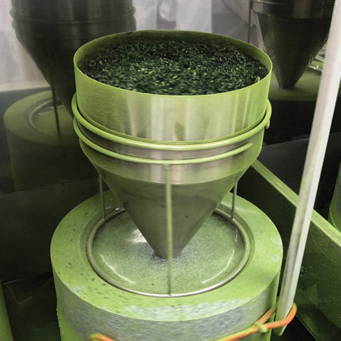How matcha is made 5