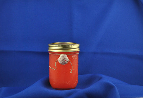 Modern Handmade All Natural Ball Jar Candle With Watermelon Scent Accented With A Lovely Scallop Shell