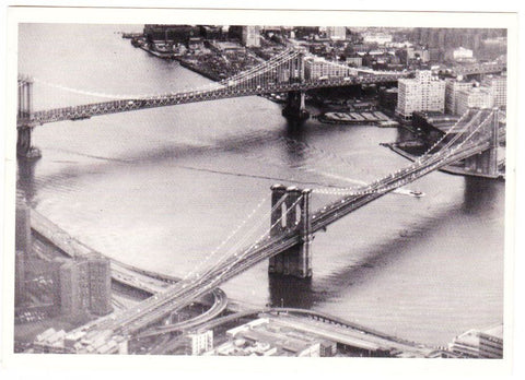 Vintage Postcard Of Photo Chronicles LTD Depicting The Two Brides At The East River New York 1995