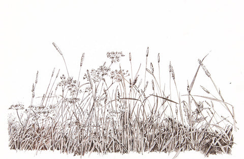 Canary Grass - Framed Original Art