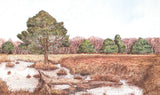 Skipwith Common - Limited Edition Giclée Print