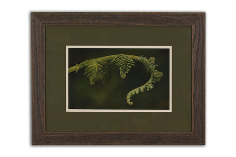 Unfurling - Limited Edition Giclée Print