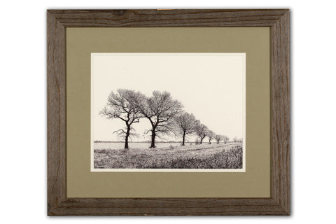 Seven Oaks - Framed Original Art