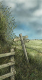 Bridleway - Framed Original Art