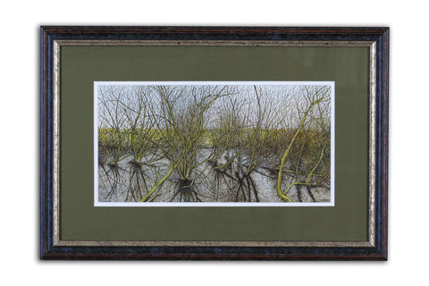 Wetland - Limited Edition Giclée Print