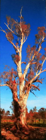Load image into Gallery viewer, Australian-Gum-Tree-Nchanted-Gifts
