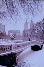 Load image into Gallery viewer, Snow-in-Central-Park-Nchanted-Gifts